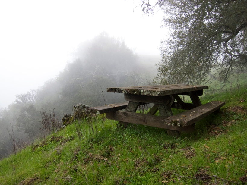 One of the scenic overlook picnic tables