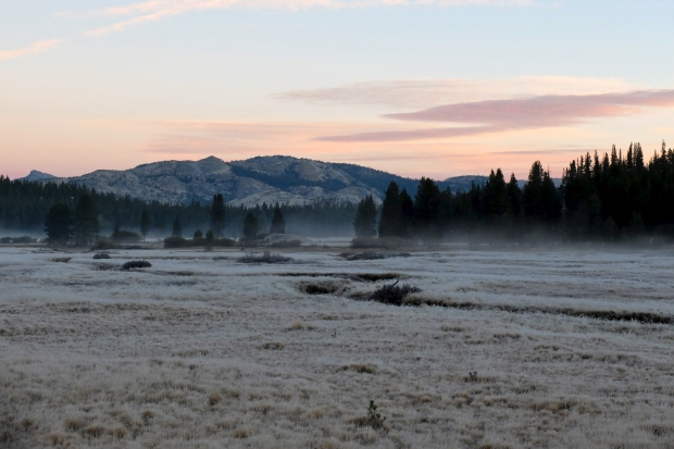 Early morning frost at Tuolumne Meadow