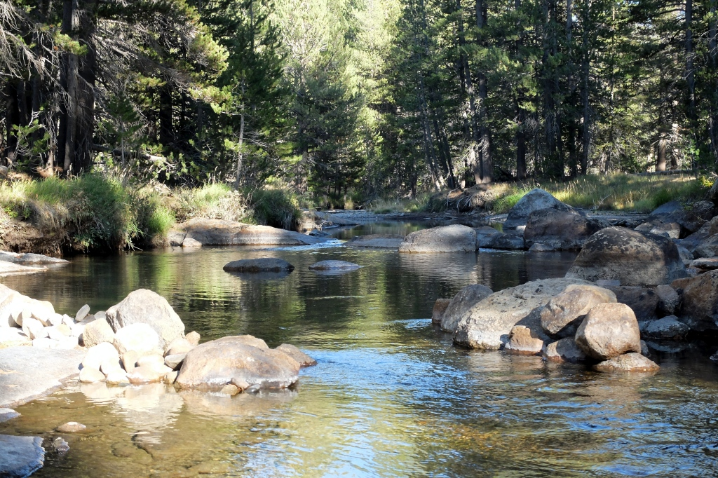Tuolumne River next to our site